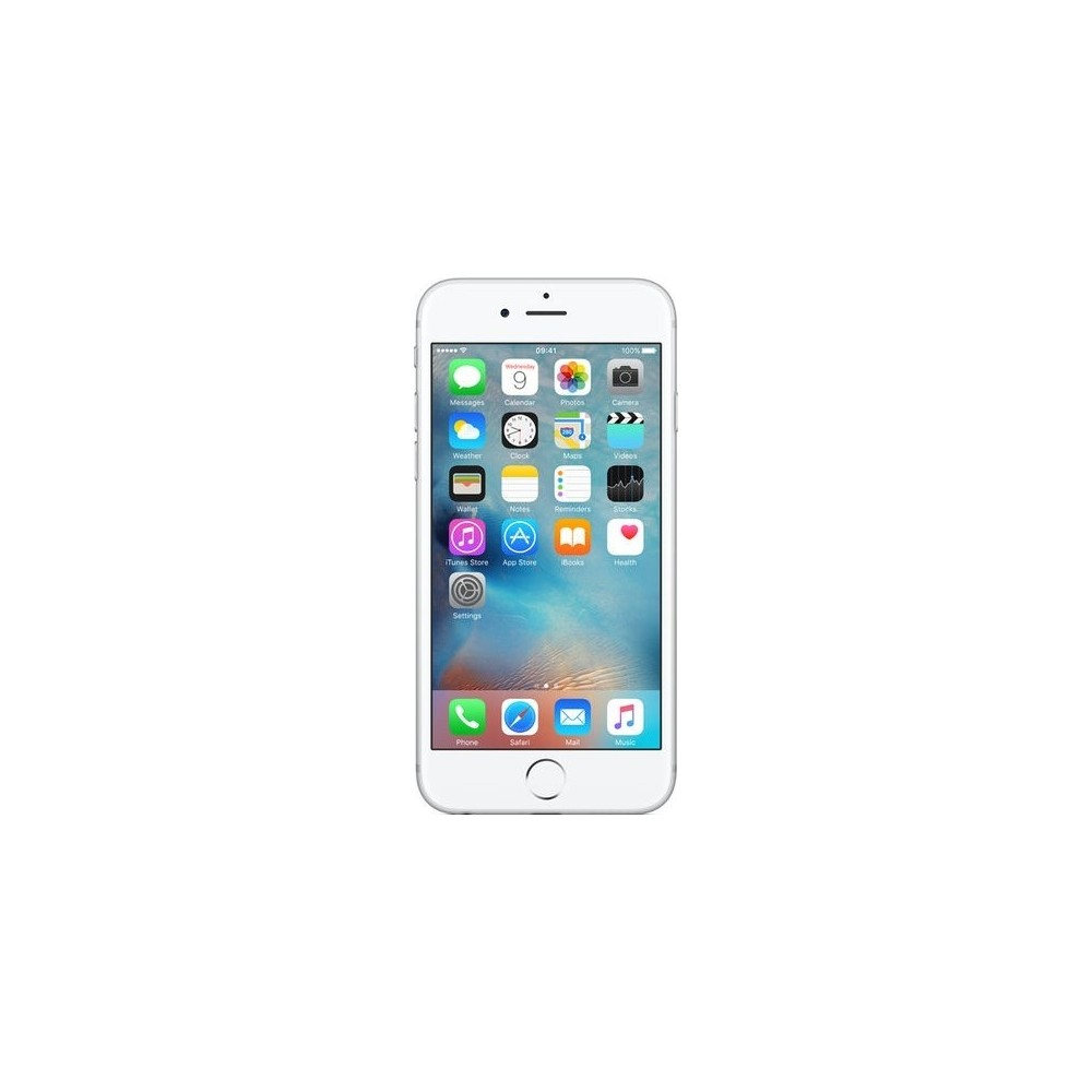 iPhone SE 32GO Gris Sidéral